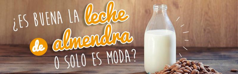 ¿Es buena la leche de almendra o solo es moda?