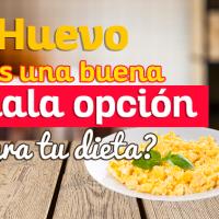 Huevo: ¿Es una buena o mala opción para tu dieta?