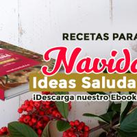 Recetas para Navidad: Ideas saludables ¡Descarga nuestro ebook gratis!