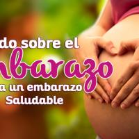 Todo sobre el embarazo: ¡Logra un embarazo saludable con estos tip´s!
