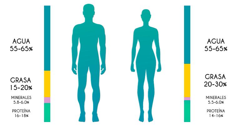 20 grasa corporal mujer