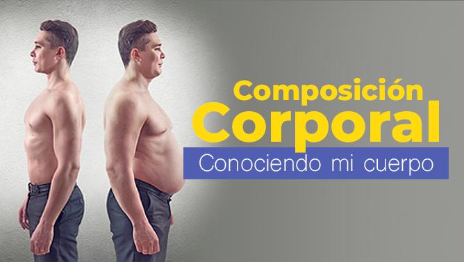 calculadora de espesor de grasa corporal en línea